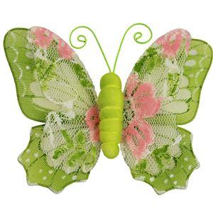 Motýl s klipy X0318
