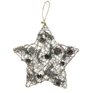 Hvězda vánoční P0896