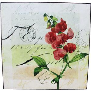obraz 25x25 - květy2, 355049