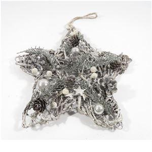 Hvězda vánoční P0895