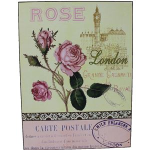 obraz 30x40 - růže, 355059