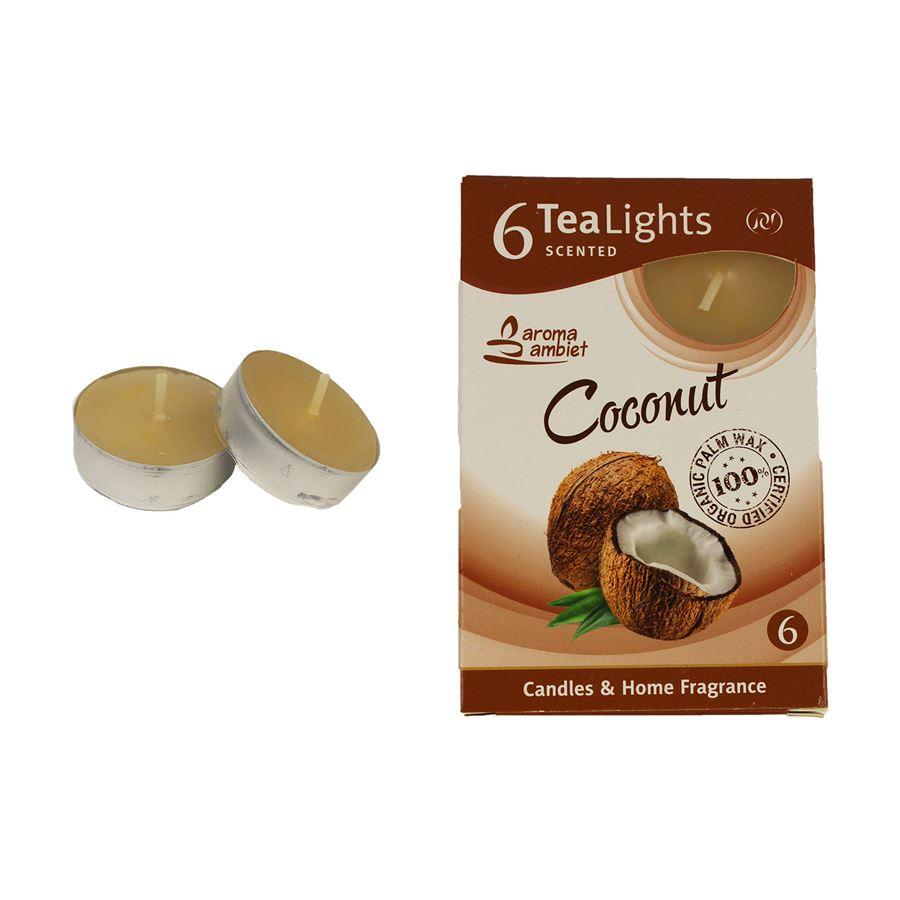 Svíčka čajová COCONUT 6ks MSC-TL1002